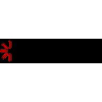 Center for Advanced Pain Studies - University of Texas at Dallas's logo